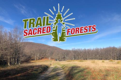 Trail Sacred Forests